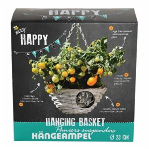 Buzzy® Happy Garden, Hanging Basket Tomaat (6)